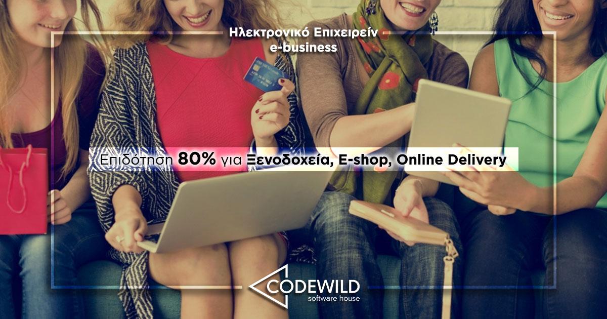 ilektroniko epiheirin epidotisi 80 codewild
